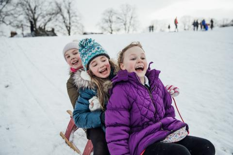 Three laughing girls sledding down a snow-covered hill.