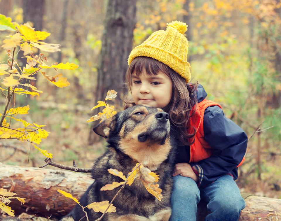 On a fall hike, little girl takes a break on a log and rests her chin on the top of her dog's head.
